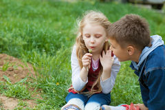 Girl and boy blow on dandelion Royalty Free Stock Image