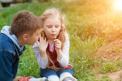 Girl and boy blow on dandelion Stock Photography