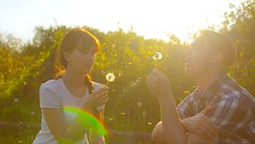 Girl and boy blowing a dandelion flower, dandelion seeds fly in sun, happy man and woman in park in spring. stock video