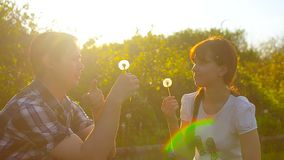 Girl and boy blowing a dandelion flower, dandelion seeds fly in sun, happy man and woman in park in spring. stock footage