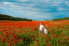 Girl and boy in a field of red poppies. concept of childhood, happiness, family royalty free stock images