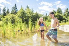 Cute girl and boy fishing with a net on a lake. A girl and boy fishing with a net on a lake royalty free stock photography