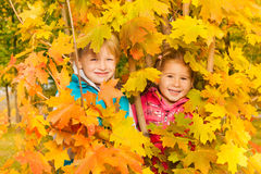 Girl and boy hiding in yellow autumn leaves Stock Photo