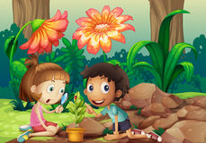 A girl and a boy looking at the plant with a magnifying glass Stock Image