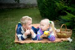 Girl boy picnic royalty free stock photos