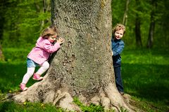 Girl with boy playing hide and seek Stock Photos