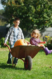 Girl and boy with pumpkins in the garden Royalty Free Stock Photography