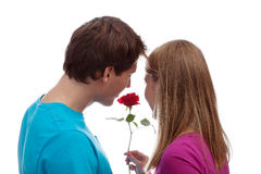 Girl and boy with the rose Stock Image
