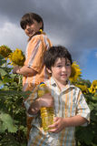 The girl and boy  with sunflower Stock Photography