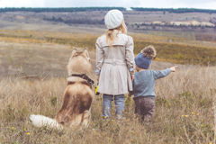 Girl and boy are walking with husky dog. Back view of little girl and child boy are looking around from the top of mountain with her husky dog, autumn season Royalty Free Stock Photo