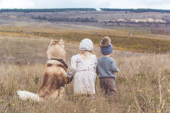 Girl and boy are walking with husky dog Stock Photo