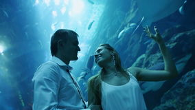 Girl and boy watching and admire Stingray and fishes in an aquarium. stock video footage