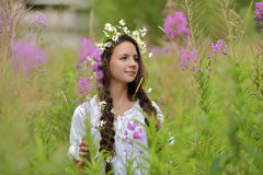 Girl with braids and a wreath of daisies. Girl with braids and daisies in her hair Stock Photos