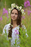 Girl with braids and a wreath of daisies Royalty Free Stock Photography