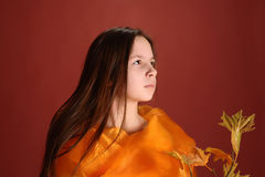 Girl with a branch of autumn leaves Royalty Free Stock Photos