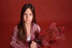 Girl with a branch of autumn leaves Stock Image