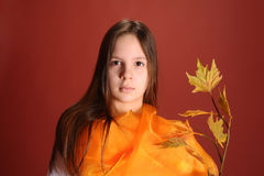 Girl with a branch of autumn leaves Stock Photography