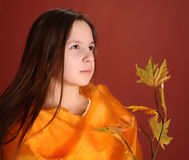 Girl with a branch of autumn leaves Royalty Free Stock Images