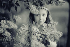 Girl in  branches of lilac. Girl in the branches of lilac Stock Image