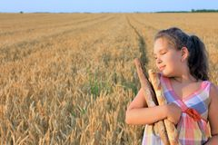 Girl with bread in the wheat field Royalty Free Stock Images