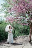Girl bride under a flowering tree with pink flowers royalty free stock photos
