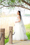 Girl bride in wedding dress with elegant hairstyle, with white wedding dress Standingin the grass by the river Stock Images