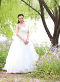Girl bride in wedding dress with elegant hairstyle, with white wedding dress Standingin the grass by the river Royalty Free Stock Photos