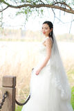 Girl bride in wedding dress with elegant hairstyle, with white wedding dress Standingin the grass by the river Royalty Free Stock Image