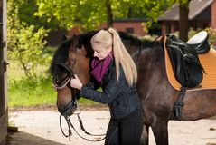 Girl bridles her horse Stock Photography