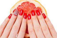 Hands with red nails lie on grapefruit Royalty Free Stock Images