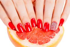 Hands with red nails lie on grapefruit Stock Image