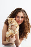 Girl and British cat. Girl holds a British cat Stock Photos