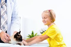 Girl brought the cat to the veterinarian Stock Photos