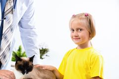 Girl brought the cat to the veterinarian Royalty Free Stock Image