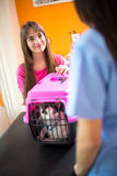 Girl brought her cat for checkup in vet clinic Royalty Free Stock Image