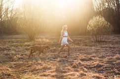 Girl and brown dog. Girl in a white dress with beautiful floral wreath on the head poses with a brown dog Royalty Free Stock Photo