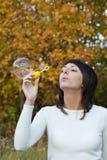 Girl, brunette Stock Photography