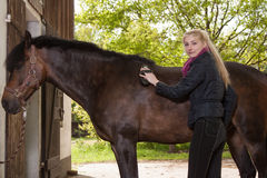 Girl brushes her pony Royalty Free Stock Photo