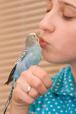 Girl and budgie Royalty Free Stock Images