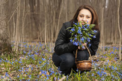 A girl with bunch of bluebells. In spring forest Stock Photos