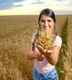 Girl with a bunch of ears of wheat Stock Photos