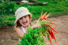 Girl with a bunch of freshly carrots Royalty Free Stock Photography