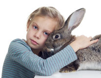Girl and bunny. Blond girl hugging gray rabbit on white backround Stock Photos