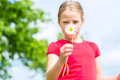 Girl with buttercups in summer outdoors Stock Images