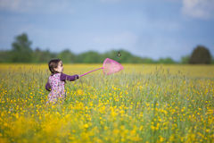Girl with Butterfly Net in Field of Yellow Flowers Stock Photo
