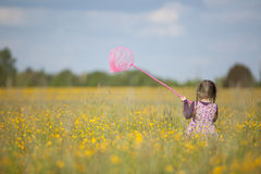 Girl with Butterfly Net in Field of Yellow Flowers Royalty Free Stock Photography