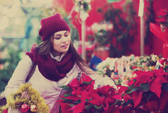 Girl buying floral compositions at Christmas fair Royalty Free Stock Image