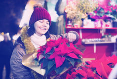 Girl buying floral compositions at Christmas market Stock Photos