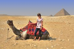 Girl, Camel and Egyptian Pyramid royalty free stock photography