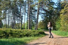 Girl with camera taking pictures of nature in spring, beautiful forest and trees on a Sunny day Royalty Free Stock Photography